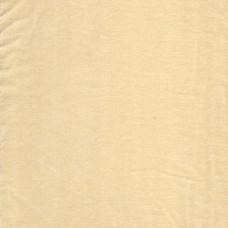 Cotton Velvet Ivory